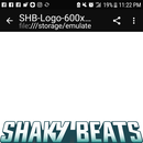 Shaky Beats Music Festival 's picture