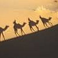 Morocco Sahara's Photo