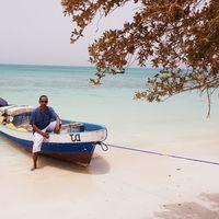 Moustafa Moussa's Photo