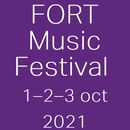 Rave On Fort Festival 's picture