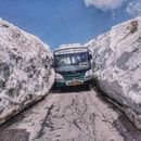 Leh Ladakh Trip 's picture