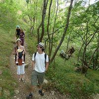 Ellie, Tashi and Lulu Smale-Fletcher's Photo