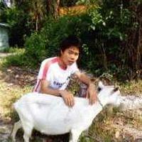 Jimi Zeng's Photo