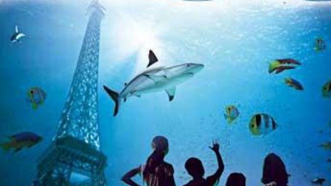 visite nocturne de l aquarium de gratuit levallois perret 206 le de