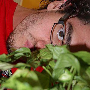 Daniel Kölbl's Photo
