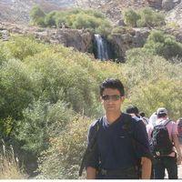 Ali Hedayati's Photo