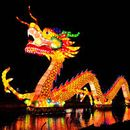 Chinese New Year's picture