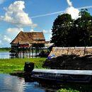 River Trip (Iquitos - Manaos)'s picture