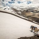 CS DiaShow - Greater Patagonian trail by horse's picture