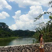millo river's Photo