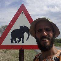 paulo saraiva's Photo