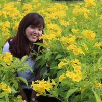 Huong Phan's Photo