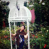 Ivy Chong's Photo