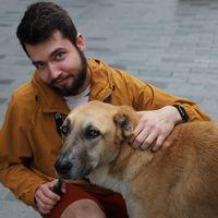 Stas Zveryanov's Photo