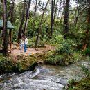 Tour Gratis Parque Arví's picture