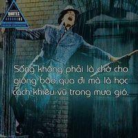 Anh Tran's Photo