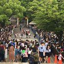 Tokyo Street Culture Tour's picture