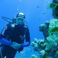 Deniz Hacigumus's Photo