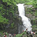 Bhivpuri Waterfall's picture