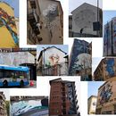 Torino Street art bike tour's picture