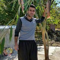 Zana Nawzari's Photo