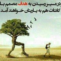 Abbas Rashidi's Photo