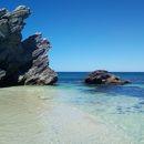 Immagine di Roadtrip Cairns Daintree :)