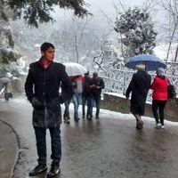 Fotos de saha sharan