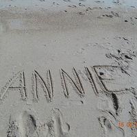 Annie Hoai's Photo