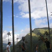 Carlos  Andrés's Photo