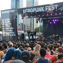 Afropunk Joburg festival 2017 's picture