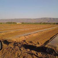 Фотографии пользователя hector  guadarrama