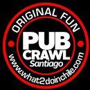 Pub Crawl Santiago 's picture
