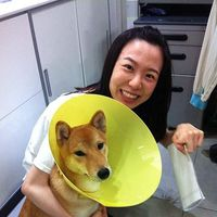 Lucy Huang's Photo
