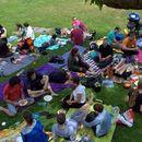 Vegan picnic in the park's picture