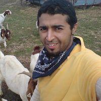 Yasser_AA's Photo