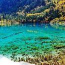Jiuzhaigou National Park's picture
