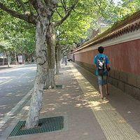 Wayne Zhuang's Photo