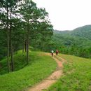 Hiking in the most beautiful trail in Vietnam's picture