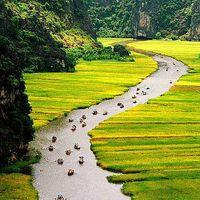 Fotos de Quoc toan Nguyen
