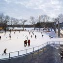 Ice Skating in Prospect Park - New York Adventures's picture