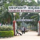 Lal Bagh Weekend Walk's picture