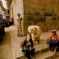 Inés  Mejia's Photo
