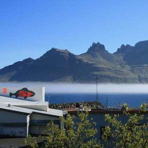 Fish Factory Stöðvarfjörður's Photo