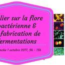 Atelier microbiote & fabrication de fermentations's picture