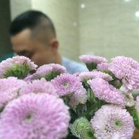 Фотографии пользователя Phuong Dang