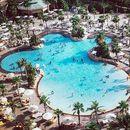 Ladies free entry: Nasimi Beach, Atlantis The Palm's picture