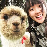Sungyoun Kim's Photo