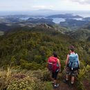 Great Barrier Island - Hiking Aotea Track's picture