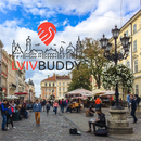 Lviv Free Walking Tour Must See's picture